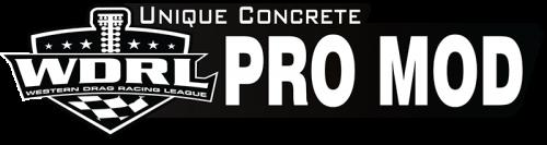wdrl-unique-concrete-pro-mod-web-use